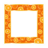 Gold frame with oranges. Isolated on white vector illustration