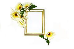 Gold Frame with White and Yellow Daisies Stock Photography