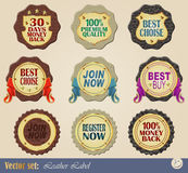 Gold-framed labels Royalty Free Stock Image