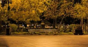 Gold genauer Baku Boulevard Lizenzfreie Stockfotografie