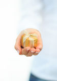 Gold gift box in hand. With ribbon  on white backgraund Royalty Free Stock Image