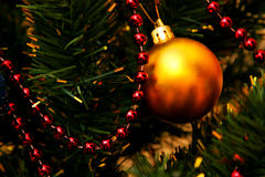 Gold glass bauble and red garland. Hanging on artificial Christmas tree Royalty Free Stock Image