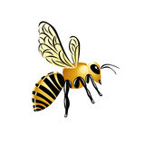 Gold glossy illustrated wasp, striped yellow insect on white background. stock illustration