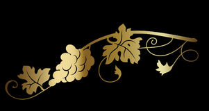 Gold grape wine branch on black background. Stock Photo