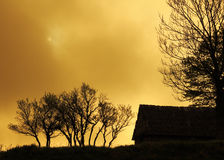 Gold graphically landscape with house and trees royalty free stock photos