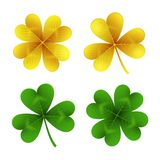 Gold and green clover leaves isolated on white background.St. Patrick Day shamrock and four-leafed traditional Irish. Symbols of luck, wealth and celebration Royalty Free Stock Images