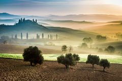 Gold and green fields in the valley at sunset, Tuscany Royalty Free Stock Image