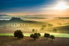Gold and green fields in the valley at sunset, Tuscany Stock Image