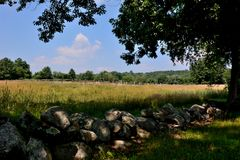 Golden New England Field with stone wall and split rail fence. Gold and green grass below deep blue sky. Warm, sunny day in Harvard, Middlesex County stock photos