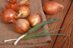 Gold and green onion Stock Photo