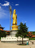 Gold Statue of guanyin. The Gold Guanyin Statue looks shining in a sunny day of blue sky Royalty Free Stock Photo