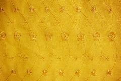 Gold guipure, embroidery on cloth for wedding dress, texture Royalty Free Stock Photo