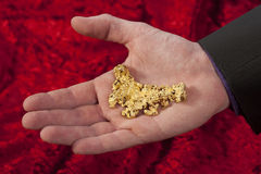 Gold in a hand. Gold piece in a hand with red background royalty free stock photo