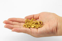 Gold on hand Stock Photography