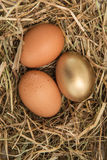 Gold egg in the straw with others Stock Photo