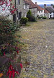 Gold Hill Shaftesbury Dorset. Gold Hill Shaftesbury with Flowers Royalty Free Stock Photography