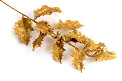 Gold holly Royalty Free Stock Image
