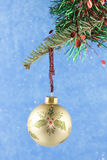 Gold holly bauble on blue background Royalty Free Stock Image
