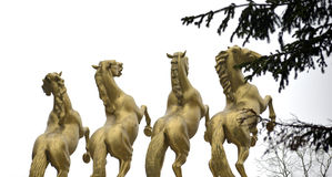 Gold Horses Monument of heroes in Skopje Macedonia Stock Photography
