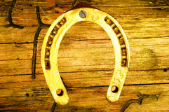 Gold horseshoe Stock Images