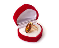 Gold Jewellery with amber Royalty Free Stock Image