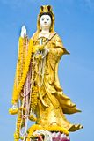 Gold kwan yin on blue sky  Royalty Free Stock Photography