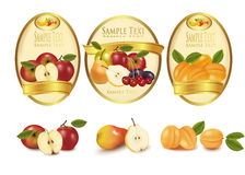 Gold labels with different sorts of fruit. Vector. Stock Images