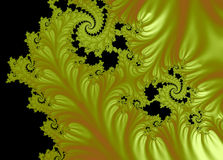 Gold Lace Royalty Free Stock Images