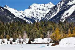 Gold Lake Spring Snow Snoqualme Pass Washington Royalty Free Stock Images