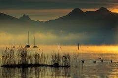 Gold lakes royalty free stock photo