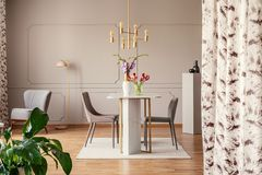 Gold lamp above chairs and table with flowers in elegant dining room interior with plant. Real photo stock images