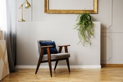 Gold lamp and plant above wooden armchair in grey flat interior with frame on the wall. Real photo royalty free stock photography