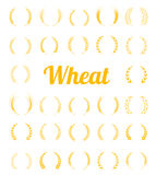 Gold laurel wreath - a symbol of the winner. Royalty Free Stock Photography