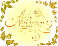 Gold leaf . Autumn decorations . set angle . Word autumn . Stock Photos