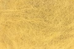 Gold leaf background stock images