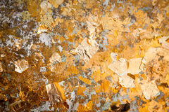 The gold leaf. For the background and textures. Royalty Free Stock Images