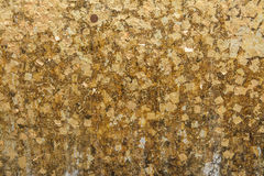 The gold leaf. For the background and textures. Stock Image