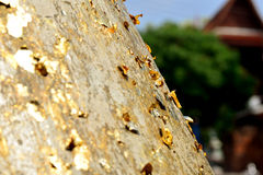 Gold leaf Stock Photography