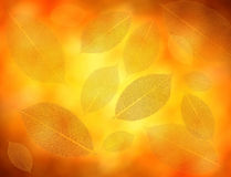 Gold leaves background. Gold background wiht artifical leaves stock photos
