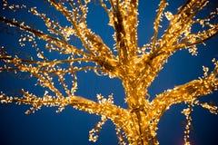 Gold lights Christmas Tree Stock Photos