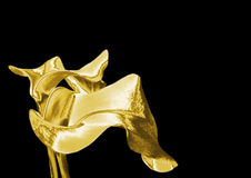 Gold lily Royalty Free Stock Photos