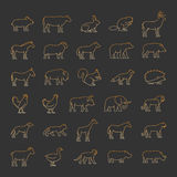Gold line set of silhouettes animals Royalty Free Stock Photos
