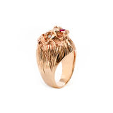 Gold lion head ring Stock Photos