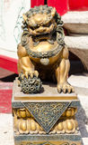 Gold Lion statue Stock Photography