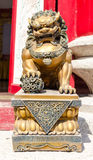 Gold Lion statue Royalty Free Stock Image