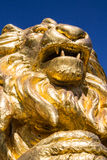 Gold  lion statues  on blue isolated Stock Photo