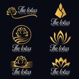 Gold lotus flower logo vector set design Royalty Free Stock Image