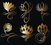 Gold lotus flowers design for spa. Vector lotus flowers design for spa, yoga class, hotel and resort Stock Photos