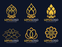 Gold Lotus logo vector illustration art set design Stock Photos