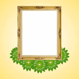 Gold louise and leaves photo frame isolated Royalty Free Stock Photography